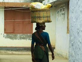 A Cart to Carry Her Vegetables